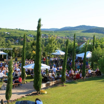 Hochzeit Firmenevent Jubiläum Catering Pfalz Siebeldingen Weingut Location Dr. Steiner